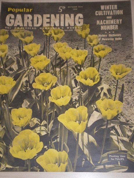 POPULAR GARDENING magazine, October 25 1958 issue for sale. Original BRITISH publication from Tilley