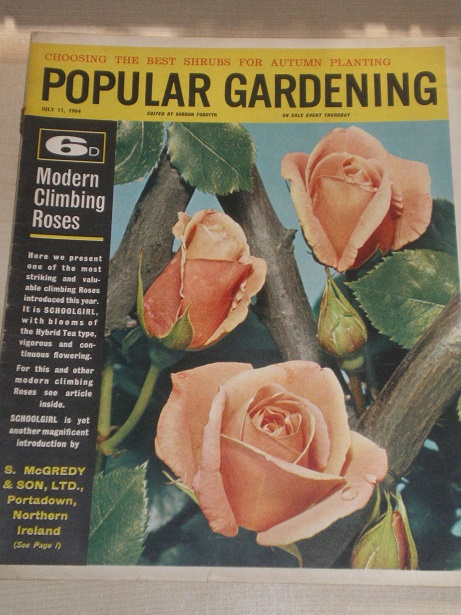 POPULAR GARDENING magazine, July 11 1964 issue for sale. Original BRITISH publication from Tilley, C