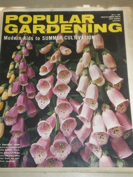 POPULAR GARDENING magazine, July 3 1965 issue for sale. Original BRITISH publication from Tilley, Ch