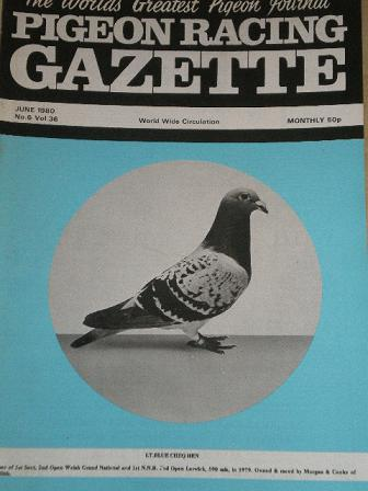 PIGEON RACING GAZETTE, June 1980 issue for sale. Original publication from Tilleys, Chesterfield, De